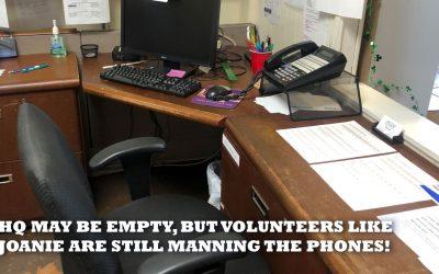Volunteer Spotlight   Joanie Allison
